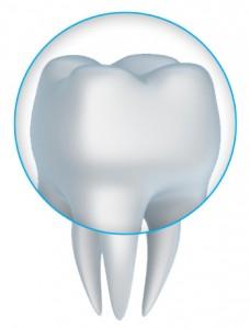 Dental Crowns and Bridges - Dr. Edward A. Borio, DDS